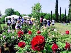 Franciacorta in fiore e la corte dei sapori a Tenuta Ambrosini