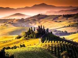 a cena con la Toscana